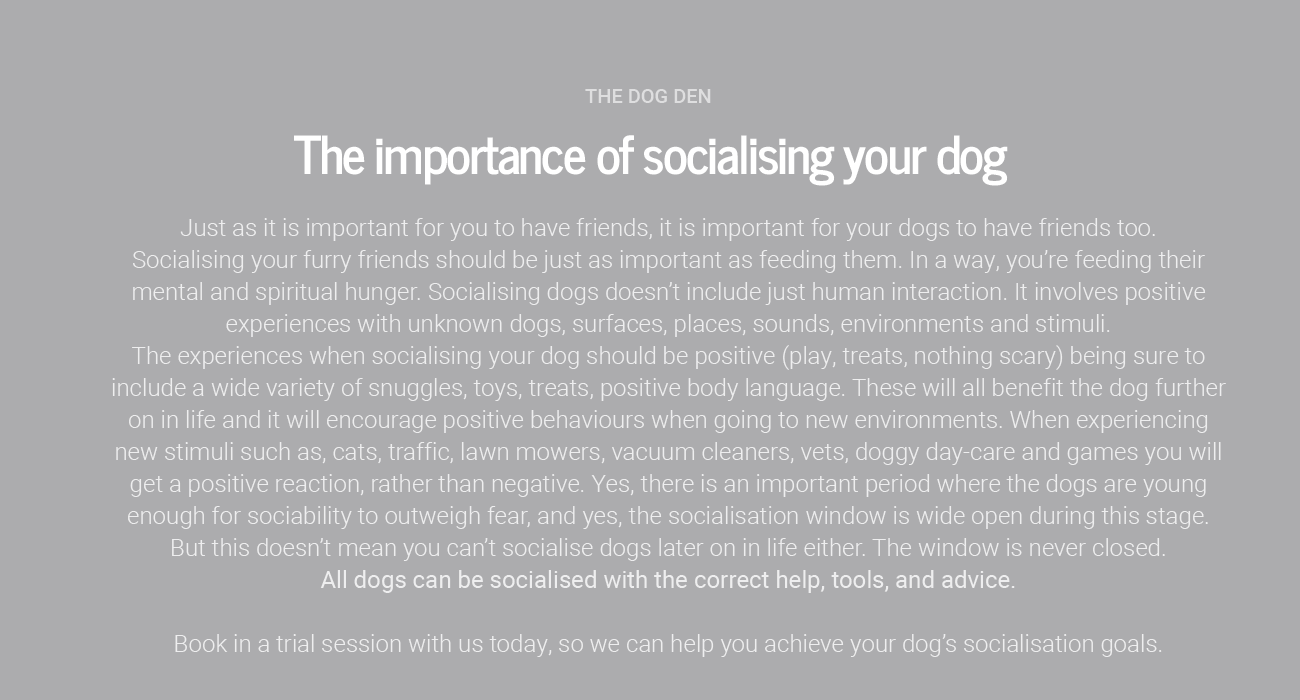 https://www.thedogden.co.nz/wp-content/uploads/2019/12/socialisation-1300x700.png