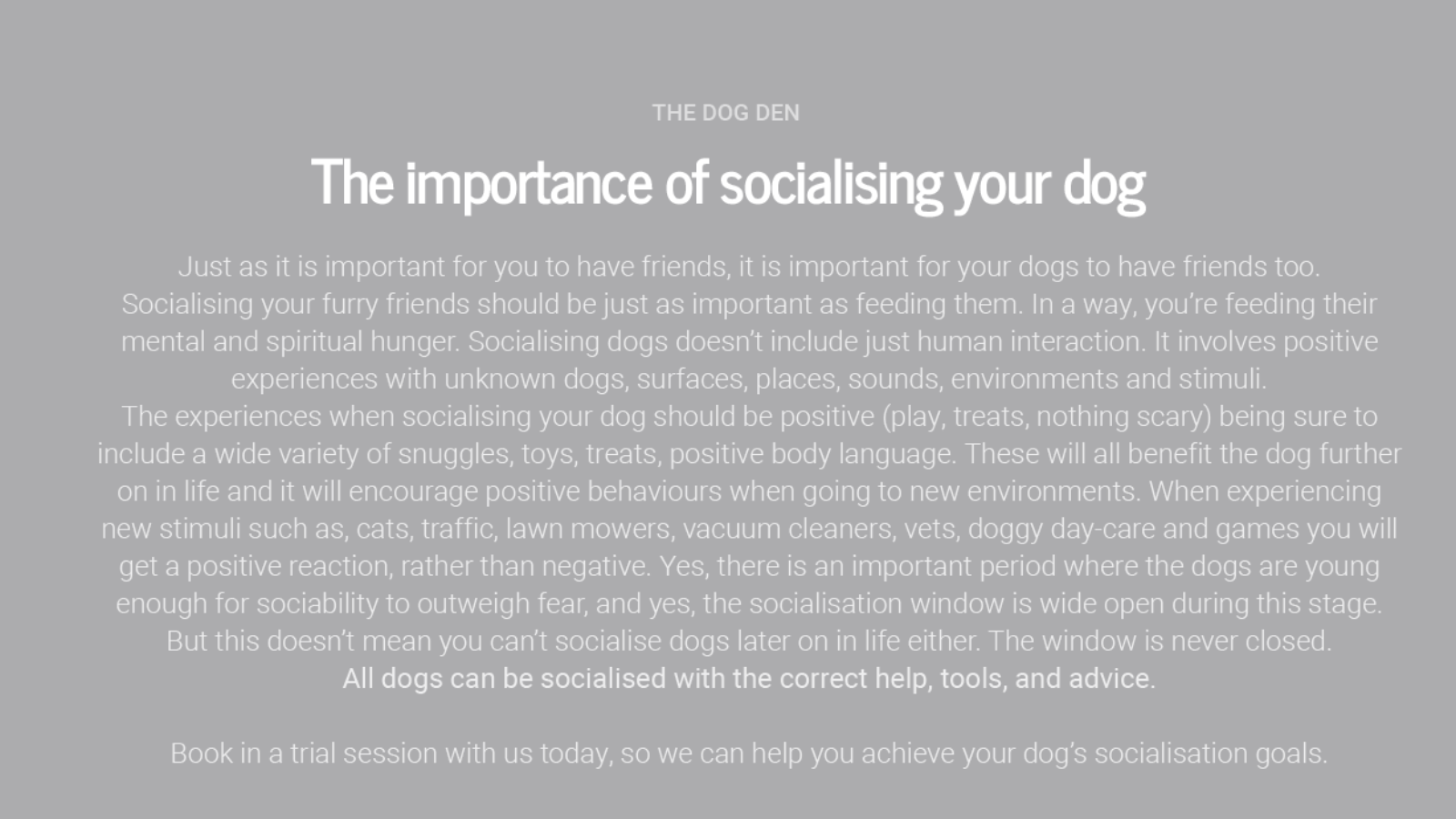 https://www.thedogden.co.nz/wp-content/uploads/2019/12/socialisation-1600x900.png